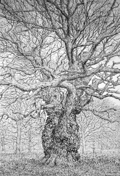 Roy Wright, 'The Old Gnarled Oak Stands Alone', 2020