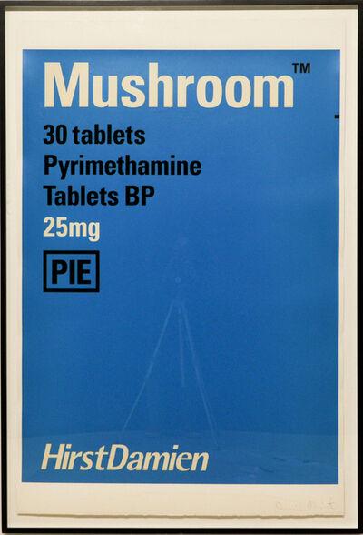Damien Hirst, 'Mushroom', 1999