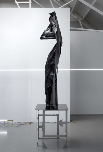 David Jablonowski, 'Public Hybrid', 2018