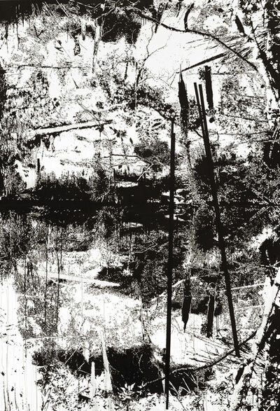 Yehudit Sasportas, 'Vertical Swamp Nr. 2', 2014