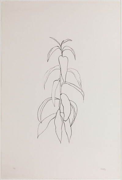 Ellsworth Kelly, 'Peach Branch', 1973-1974