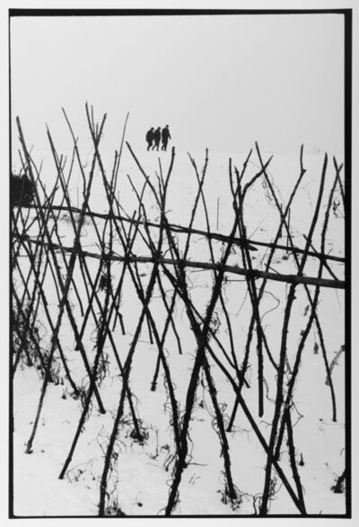 Leonard Freed, 'Holland Winter, Farmer's Field', 1963