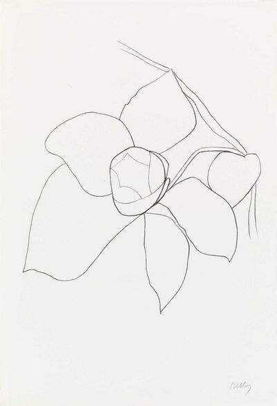 Ellsworth Kelly, 'Camellia II', 1964-1965
