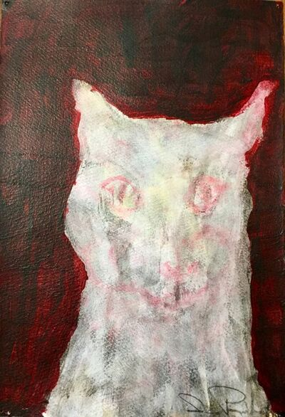 Jesse Poimboeuf, 'Ghost Cat', 2017