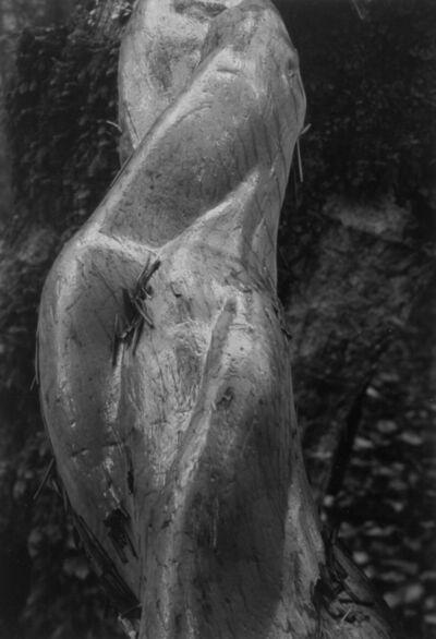 Pirkle Jones, 'Mount Tamalpais, #11', 1980