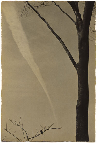 Yamamoto Masao, 'A Box of Ku #392'