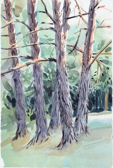 Marcelo Daldoce, 'Eagles Meere Trees 2', 2020