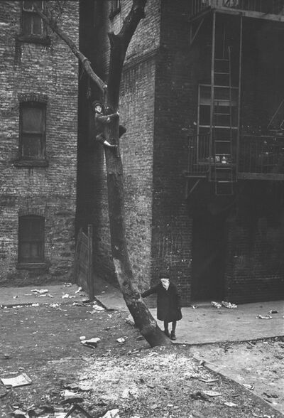 Helen Levitt, 'Untitled (Masks in Tree), New York City, New York ', ca. 1939