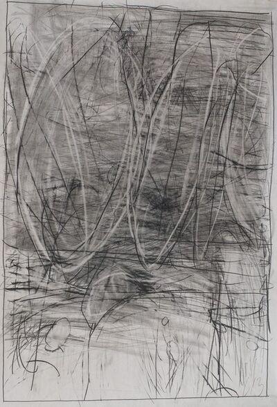 Mario Lobedan, 'Landscape L13_C', 2013