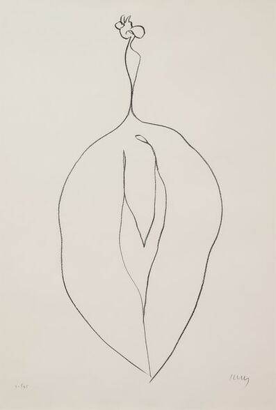 Ellsworth Kelly, 'Seaweed (Algue) from Suite of Plant Lithographs, 1965-66'