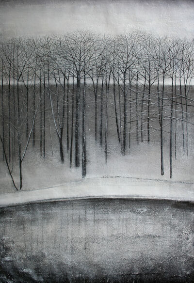 Thomas Lamb, 'Trees beside Lake in Winter'
