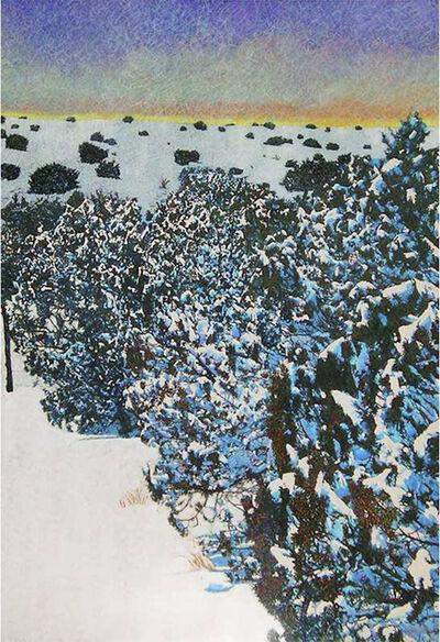 John Hogan, 'Sunset Cedars'