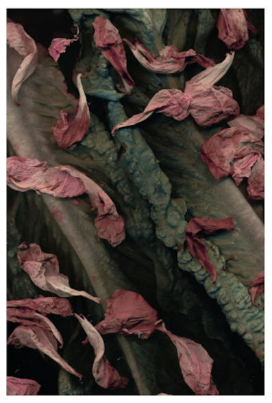 Yumiko Fujiwara, 'Still Life (II) 9', ca. 2019-2020