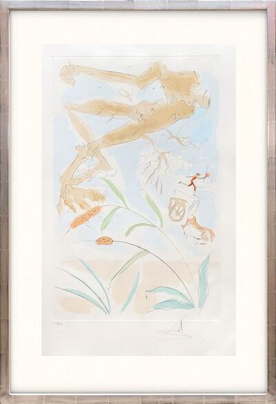 Salvador Dalí, 'La Chéne et le Roseeau. (The Oak and the Reed.)', 1974