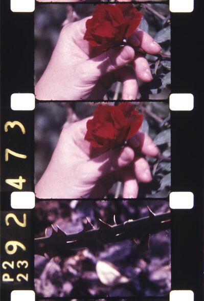 Jonas Mekas, 'Filmed on StatenIsland,1980', 2013
