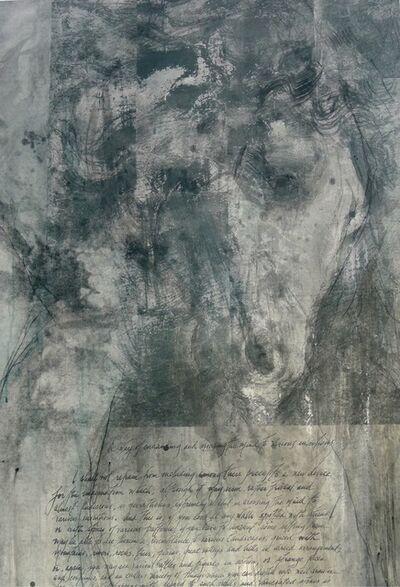 Jane Rosen, 'Raphael Leonardo', 2017