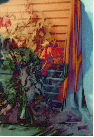 Setareh Shahbazi, 'Spectral Days#01', 2013