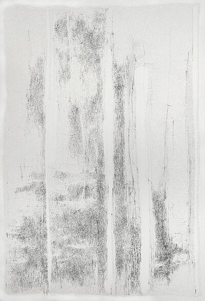 Catalina Chervin, 'Untitled', 2013-2014