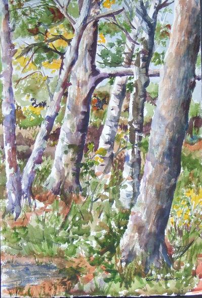 Carolyn Newberger, 'Symphony of Trees', 2016