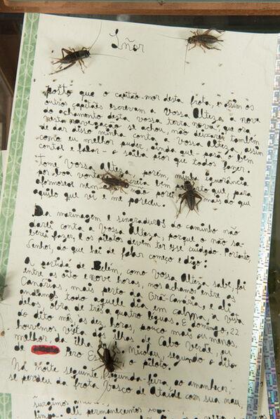 Lourival Cuquinha, 'Apólice do Apocalipse (falsely aged handwritten letter 31 pag.)', 2018