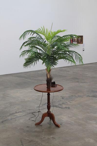 Vasco Araújo, 'Exoticism #1', 2014
