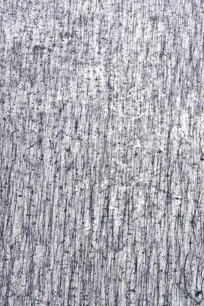 John Griebsch, 'Angular Woods II', 2017