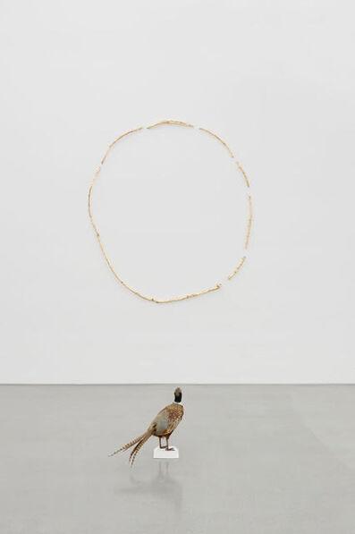 Gabriel Rico, 'Sección aurea', 2017