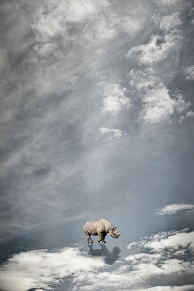 Toru Tanno, 'The rhinoceros which walks the sky', 2015