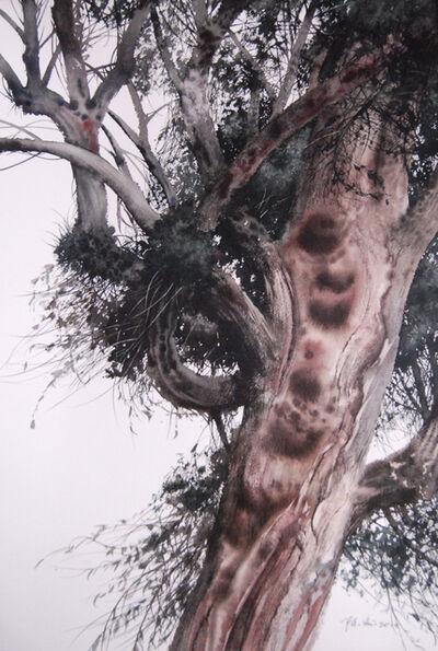 Cheng Liu 陳流, '洋草果树; Tree', 2014