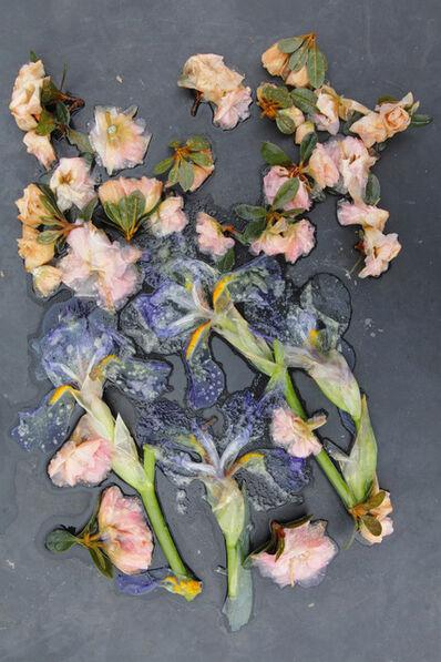 Mary Kocol, 'Irises and Azaleas, Mom's Garden', 2015