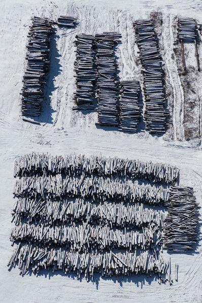 John Griebsch, 'Winter Log Piles Near Marion, NY', 2017