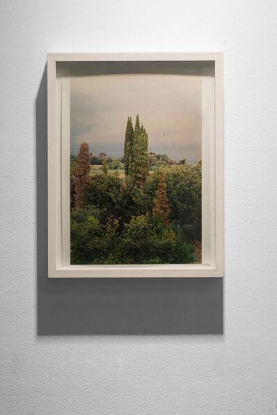 Wolfgang Tillmans, 'Tuscany', 2002