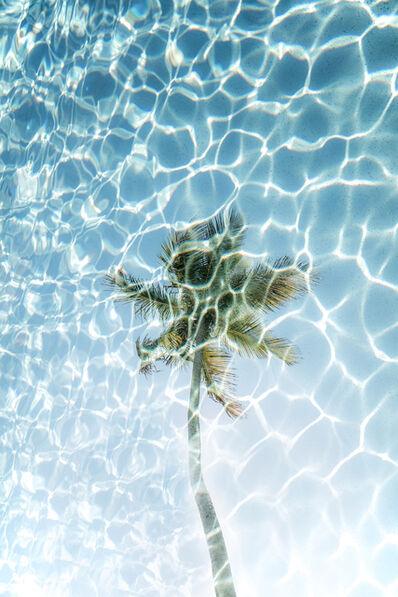 Chris Leidy, 'Palm Pool 1', 2015