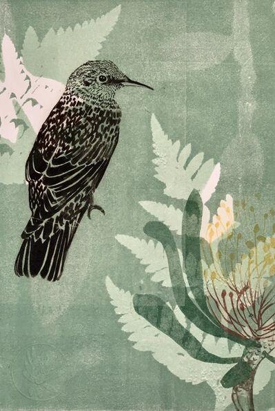 Trudy Rice, 'Baby Wattle bird and Waratah flower', 2019