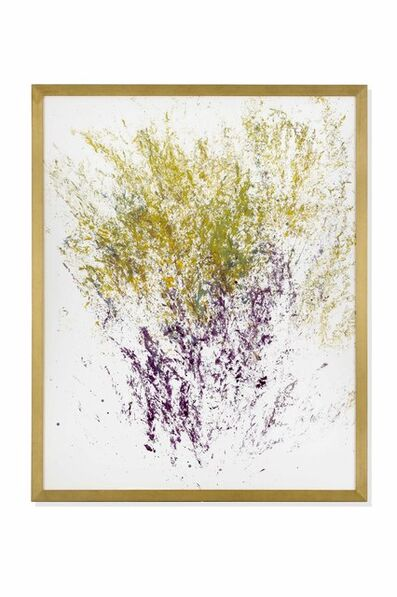 Maria Thereza Alves, 'Unrejected Wild Flora', 2016