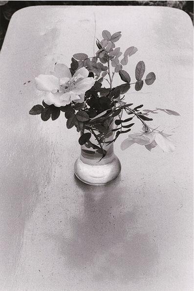 Edouard Boubat, 'Fleurs des Champs, Forêt de Fontainebleau', 1980/1981