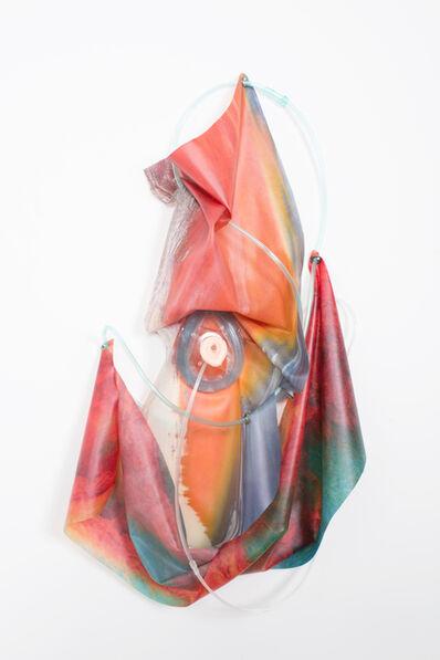 Anouk Kruithof, 'Petrified Sensibilities 17', 2017