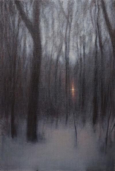 Adam Straus, 'Winter Woods', 2014
