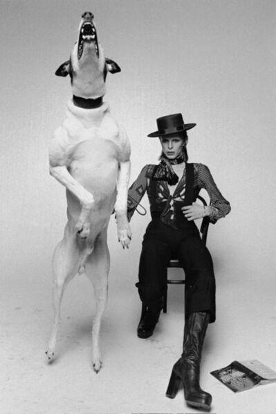 Terry O'Neill, 'David Bowie - Diamond Dogs', 1974