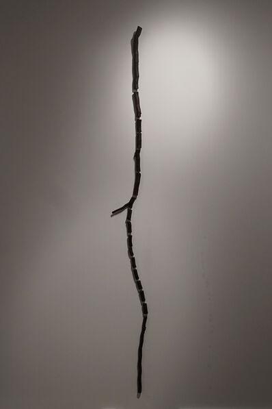Gabriela Albergaria, 'Gowanus Canal Root'