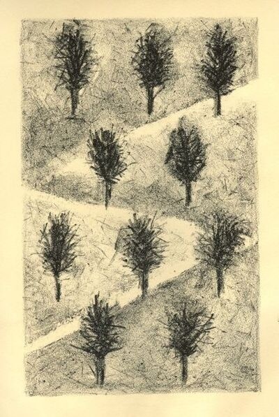 Shira Toren, 'Orchard', 2008
