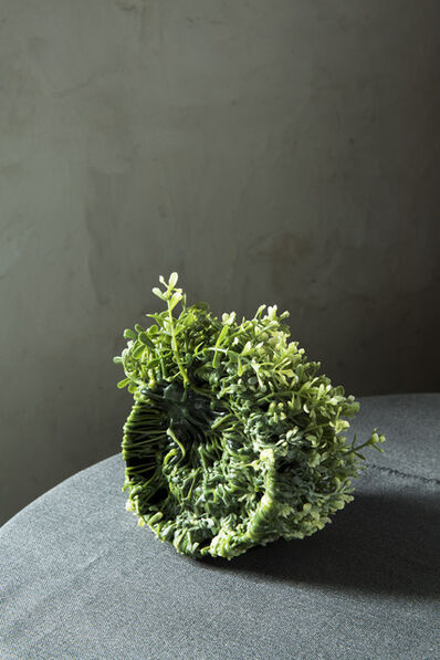 Sara Bjarland, 'Untitled 1 - from the series Plants', 2013