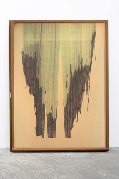 Adrien Missika, 'Botanical Frottage (Rebecca)', 2013