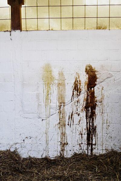 Jitka Hanzlová, 'Untitled', 2010