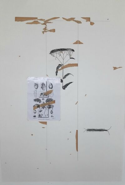 Farah Khelil, 'Encyclopedisme #2', 2018