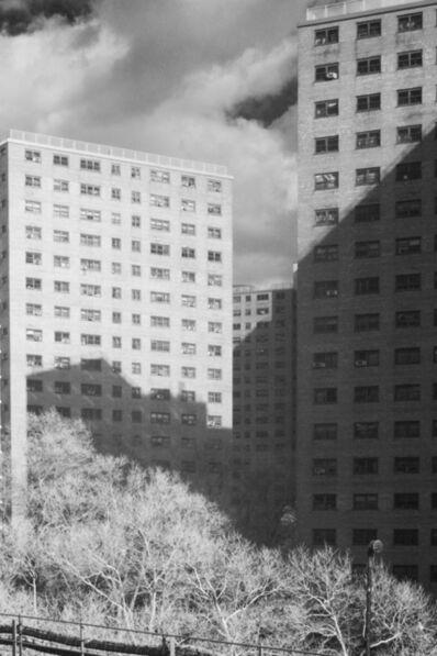 Michael Sackler, 'Untitled #8', 2020