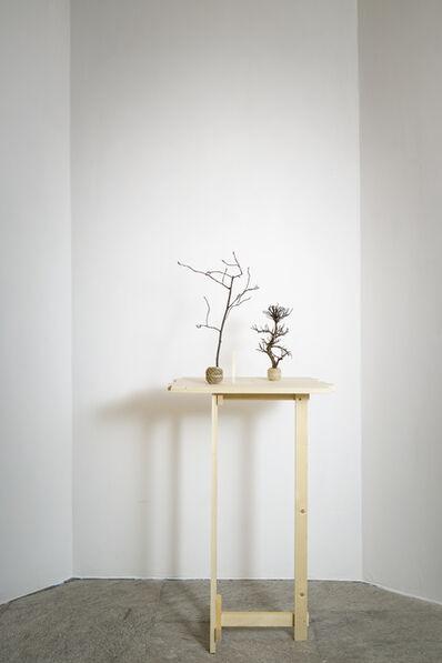 Su-Mei Tse 謝素梅, 'Trees and Roots', 2011-2019
