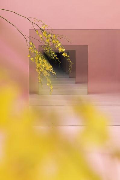 Sarah Meyohas, 'Pink and Yellow Speculation', 2015