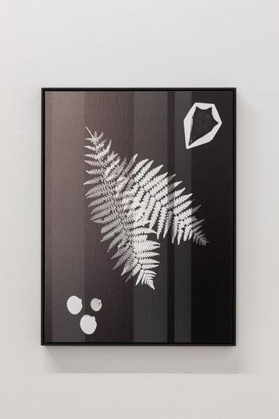Meris Angioletti, 'D-76, Lunaria#2', 2018