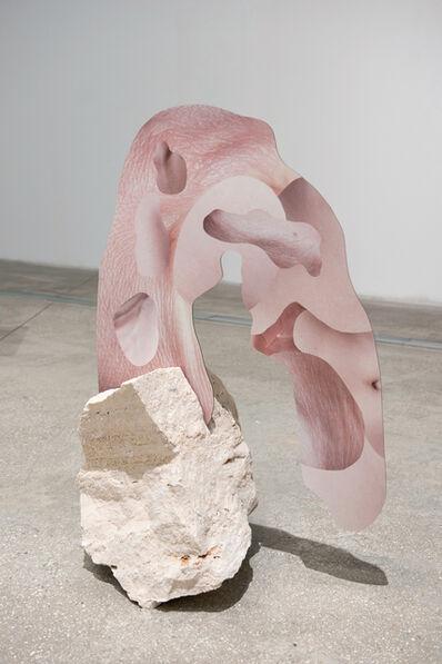 Rachel de Joode, 'Human Skin In Rock V', 2015